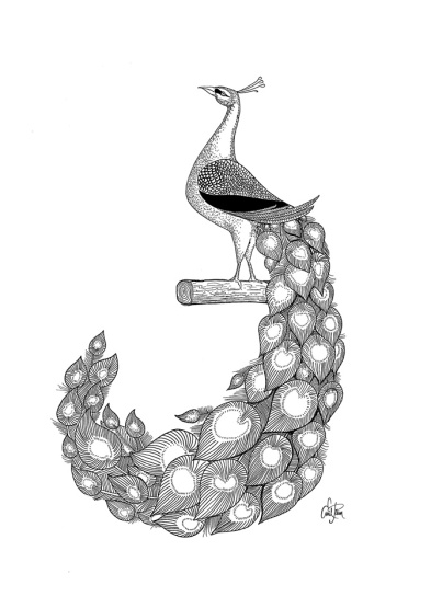 http://emilpaun.com/wp-content/uploads/2012/08/hand_drawn_peacock_illustration1.jpg